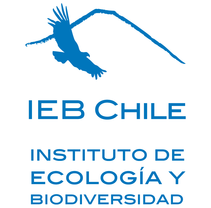http://dev7.chile.unt.edu/sites/chile.unt.edu/files/IEB%20Logo%20100x150%20pixels%20new%205-12.jpg